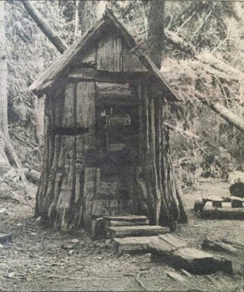 A large tree stump with a peaked roof and a door and a walkway leading up to it.