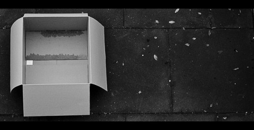An empty, damp, cardboard box sitting on dark tile, with bits of debris scattered on the ground.