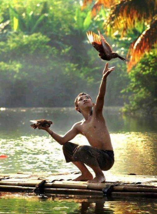 A boy on a raft holds one bird and releases another.